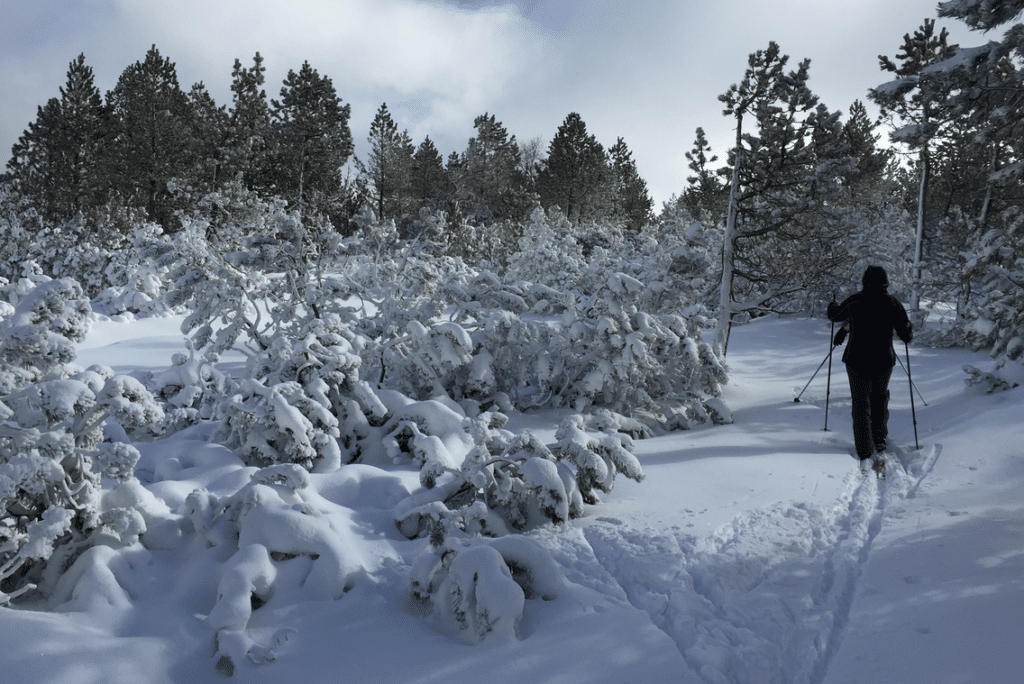 Le Bleymard en hiver
