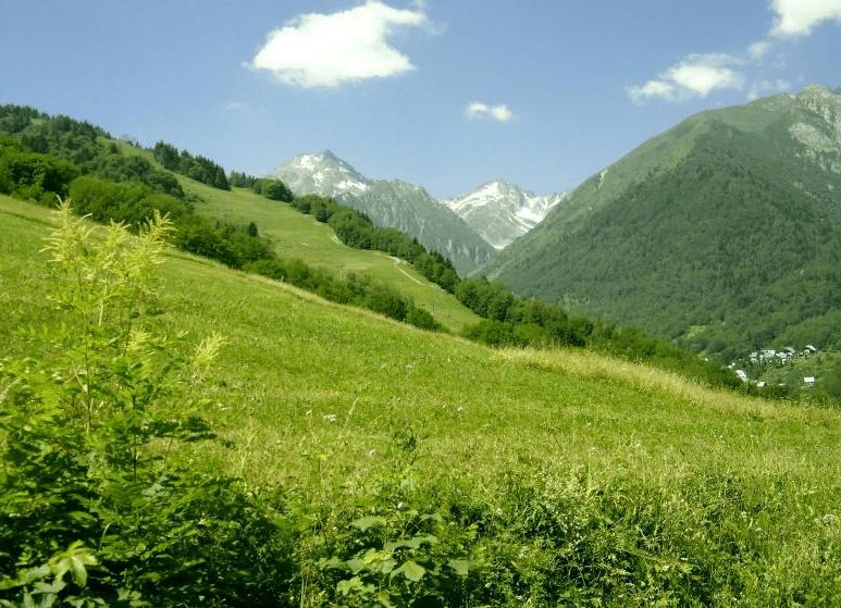 Saint Colomban des Villards en été